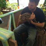 Charlie...our Tegu